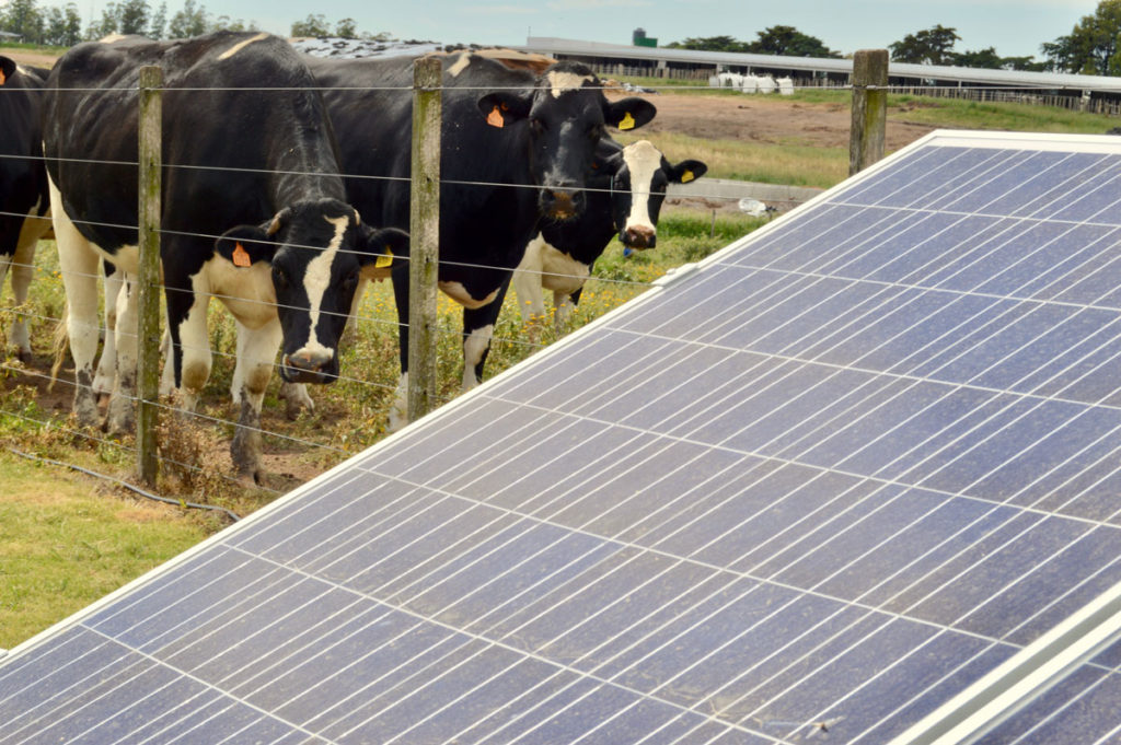 climate change renewable energies Argentina Uruguay